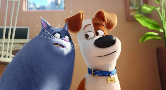"Chloe (LAKE BELL) is a fat cat who can't be bothered, unless you have food, and Max (LOUIS C.K.) is a pampered terrier mix in Illumination Entertainment and Universal Pictures' ""The Secret Life of Pets,"" a comedy about the lives our pets lead after we leave for work or school each day."