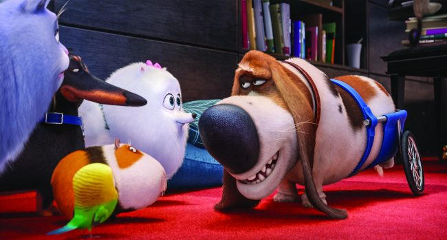 "(L to R) Chloe (LAKE BELL), Buddy (HANNIBAL BURESS), Sweetpea (foreground), Norman (CHRIS RENAUD), Gidget (JENNY SLATE) and Pops (DANA CARVEY) in Illumination Entertainment and Universal Pictures' ""The Secret Life of Pets,"" a comedy about the lives our pets lead after we leave for work or school each day."