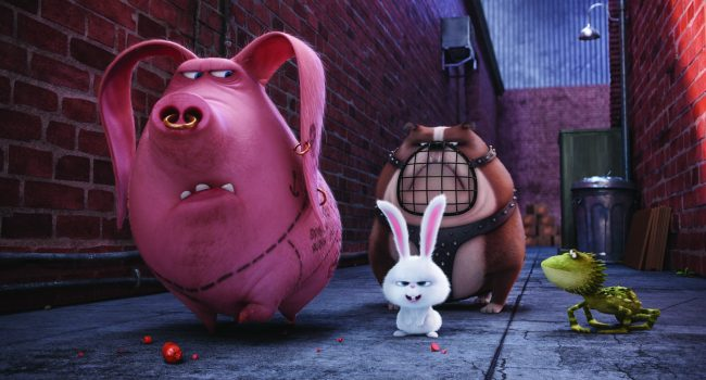 """(L to R) Tattoo (MICHAEL BEATTIE), Snowball (KEVIN HART), Ripper and Dragon in Illumination Entertainment and Universal Pictures' """"The Secret Life of Pets,"""" a comedy about the lives our pets lead after we leave for work or school each day."""