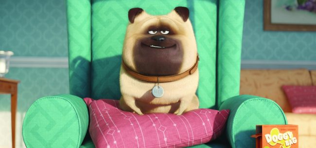 "Mel (BOBBY MOYNIHAN) is an optimistic, excitable pug in Illumination Entertainment and Universal Pictures' ""The Secret Life of Pets,"" a comedy about the lives our pets lead after we leave for work or school each day."