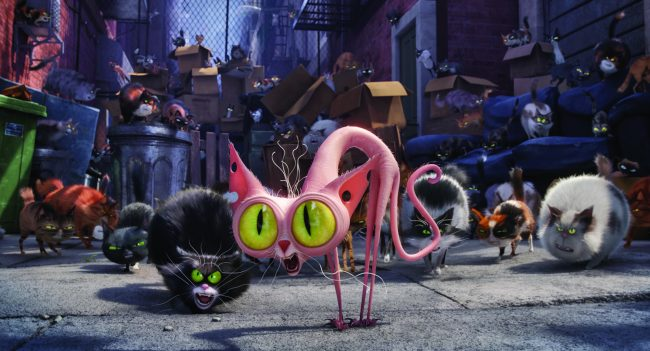"(Center) Ozone (STEVE COOGAN) is an alley cat with an attitude in Illumination Entertainment and Universal Pictures' ""The Secret Life of Pets,"" a comedy about the lives our pets lead after we leave for work or school each day."
