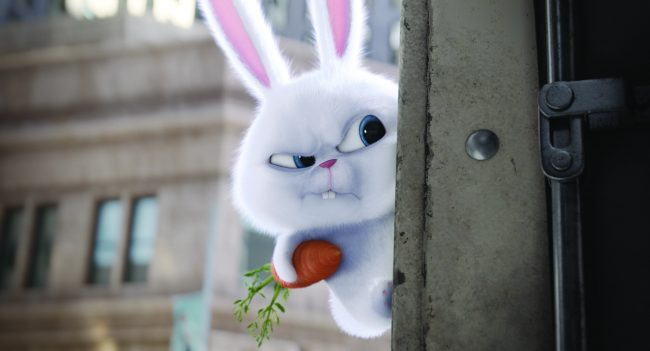"An adorable and deranged bunny, Snowball (KEVIN HART) is the leader of the Flushed Pets in Illumination Entertainment and Universal Pictures' ""The Secret Life of Pets,"" a comedy about the lives our pets lead after we leave for work or school each day."